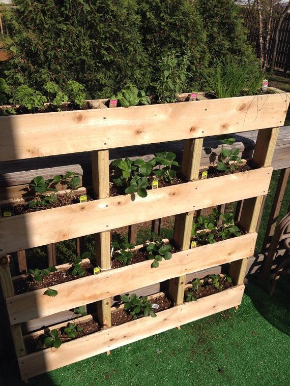 Vertical garden great for your deck or patio. Mountable to wall or ...