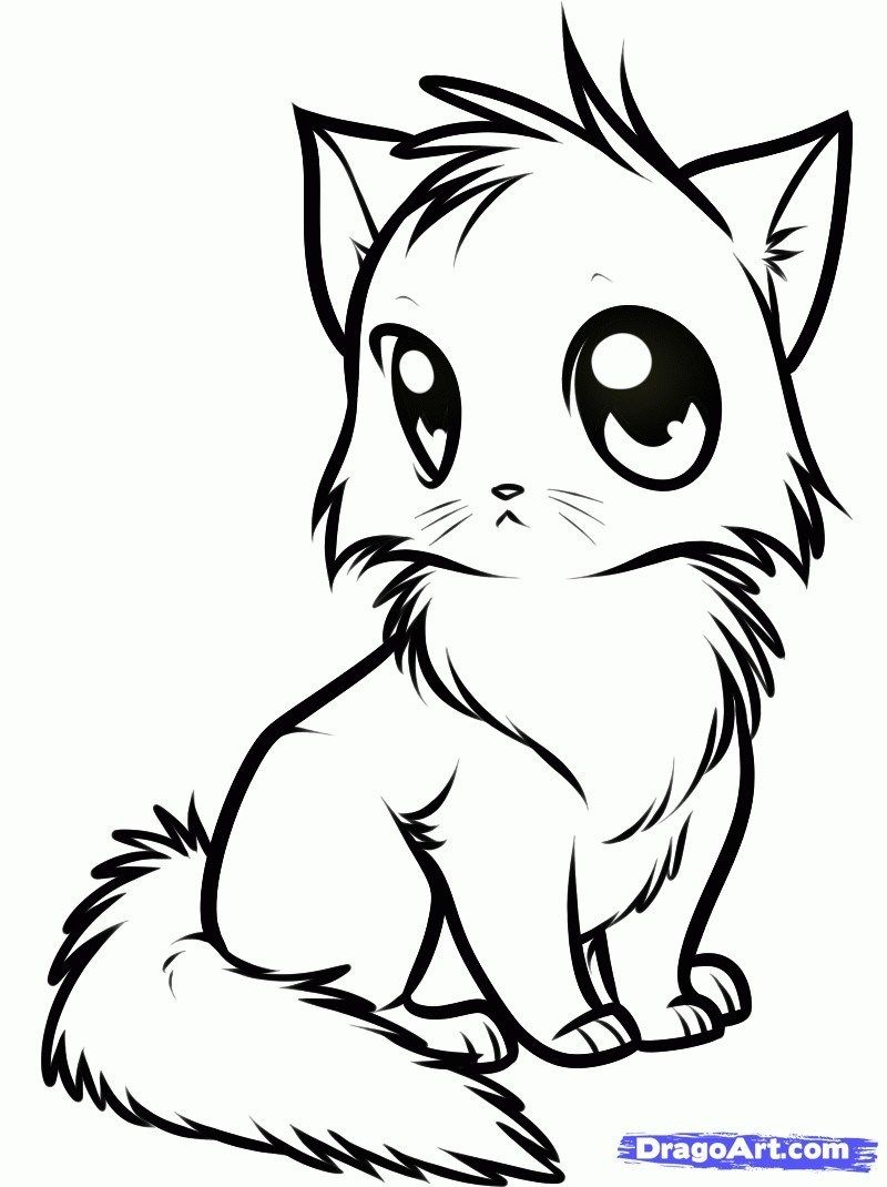 Coloring Pages Of Cats Colouring Pages Cats 15423 Cat Coloring Pages 11 Coloring Pages Of Entitlementtrap Com Cute Anime Cat Animals Drawing Images Cute Animals Images [ 1070 x 800 Pixel ]