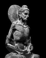 Buddha meditates, starving to death