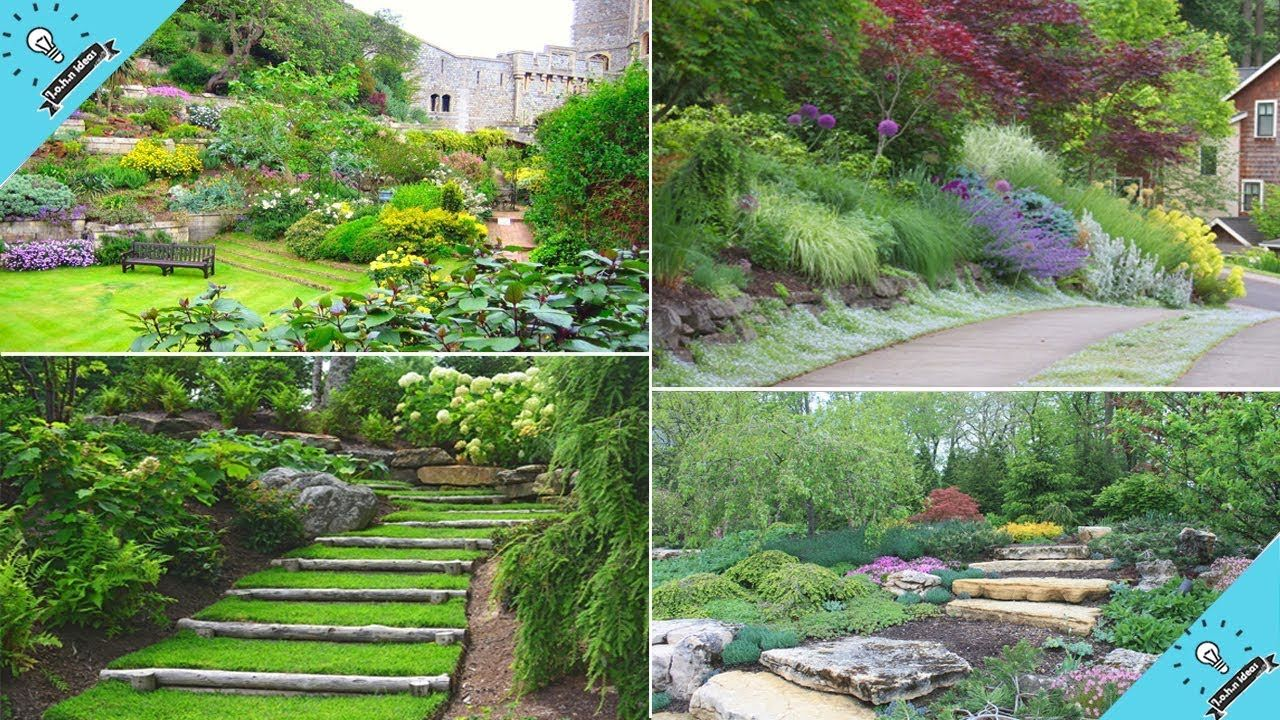 16++ Backyard with slope ideas info