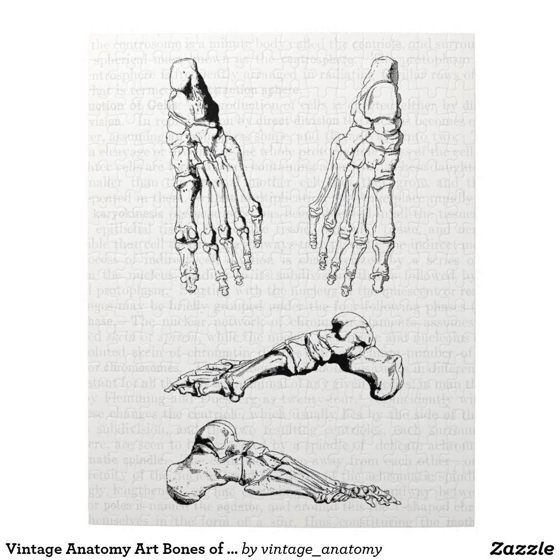 Vintage Anatomy Art Bones Of The Foot Jigsaw Puzzle Pinterest