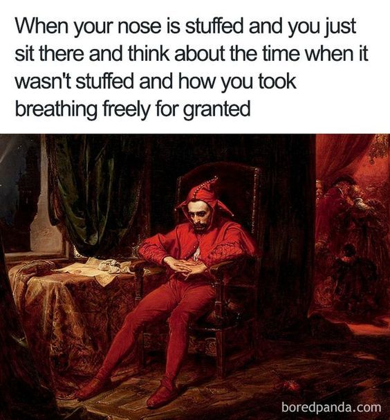Photo of Best 29 Relatable memes so true