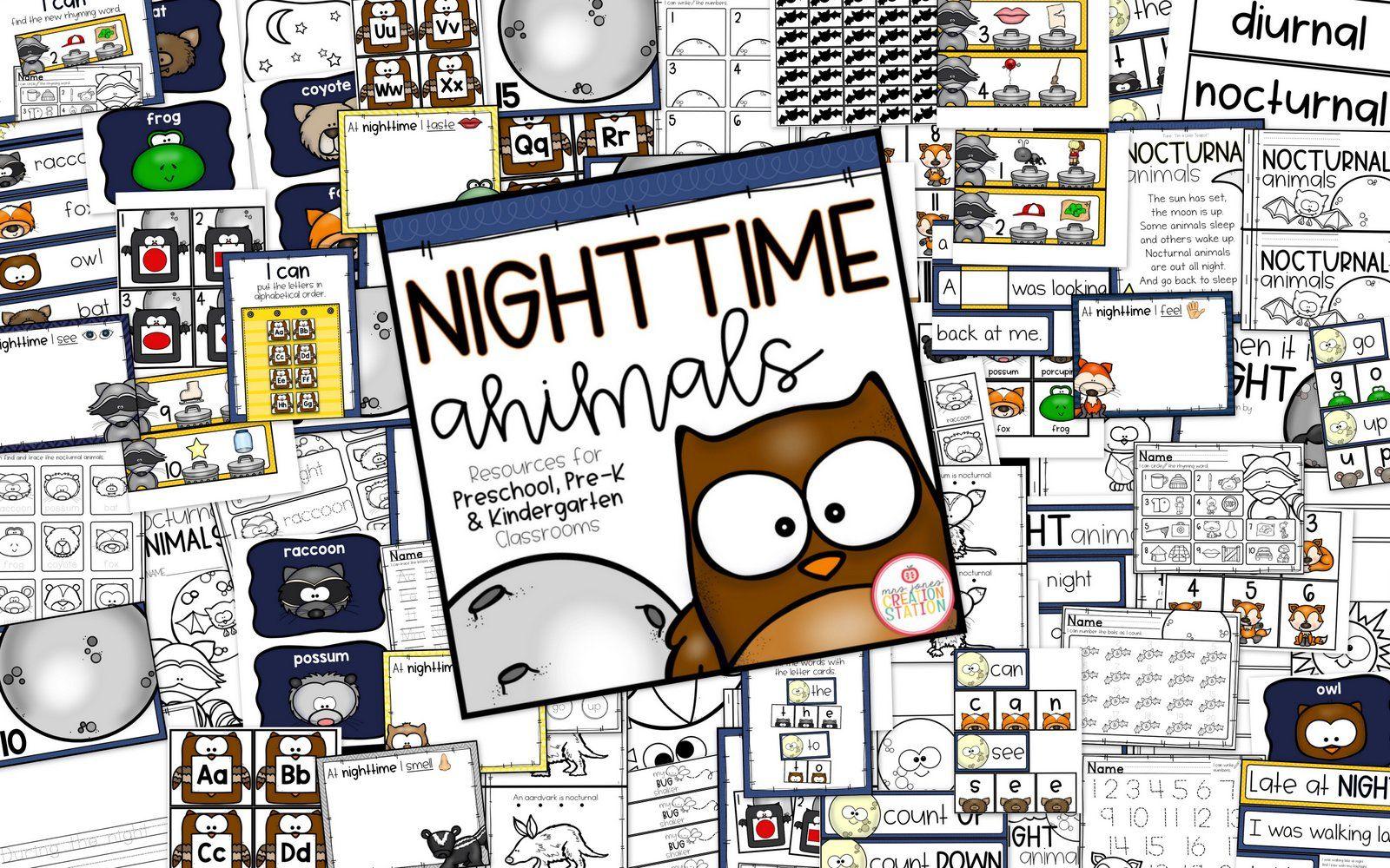 Nocturnal Animals Theme Activities For Preschool Pre K