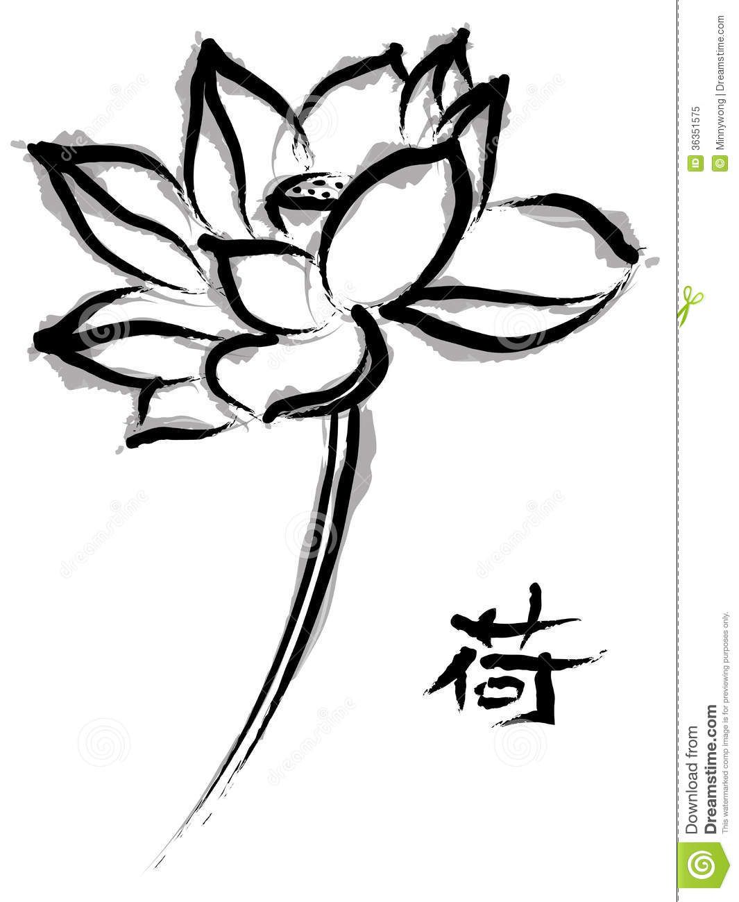 Lotus In Chinese Painting Style Stock Illustration - Illustration of beautiful, line: 36351575