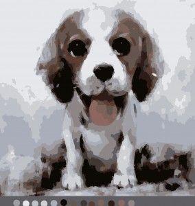 Щенок (14цв.) | Картины, Раскраска по номерам, Раскраски
