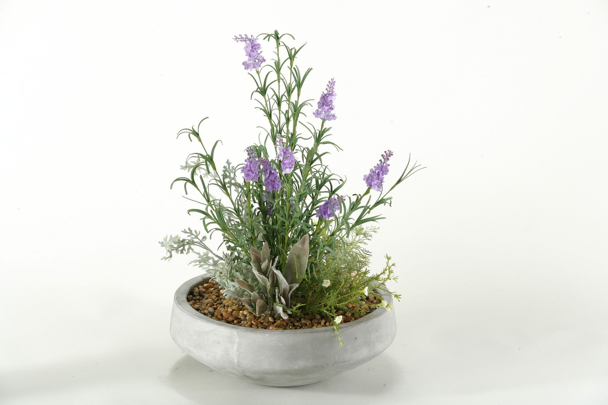 Lavender and Mixed Herbs in Contemporary Bowl