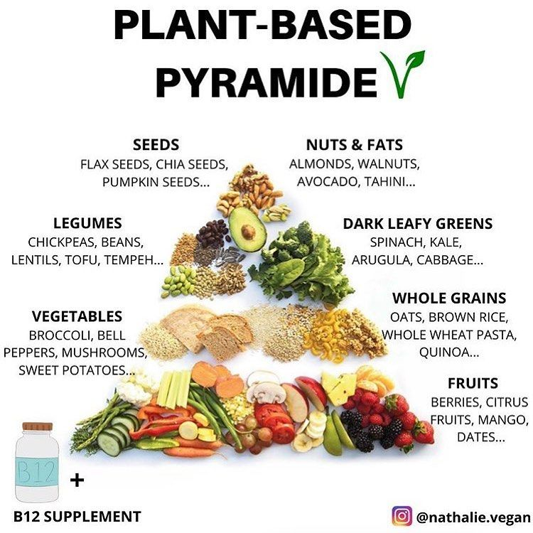 Vegancommunity On Instagram The Real Nutrition Pyramid Don T Forget To Follow Araujocesar In 2020 Nutrition Pyramid Nutrition Vegan Food Pyramid