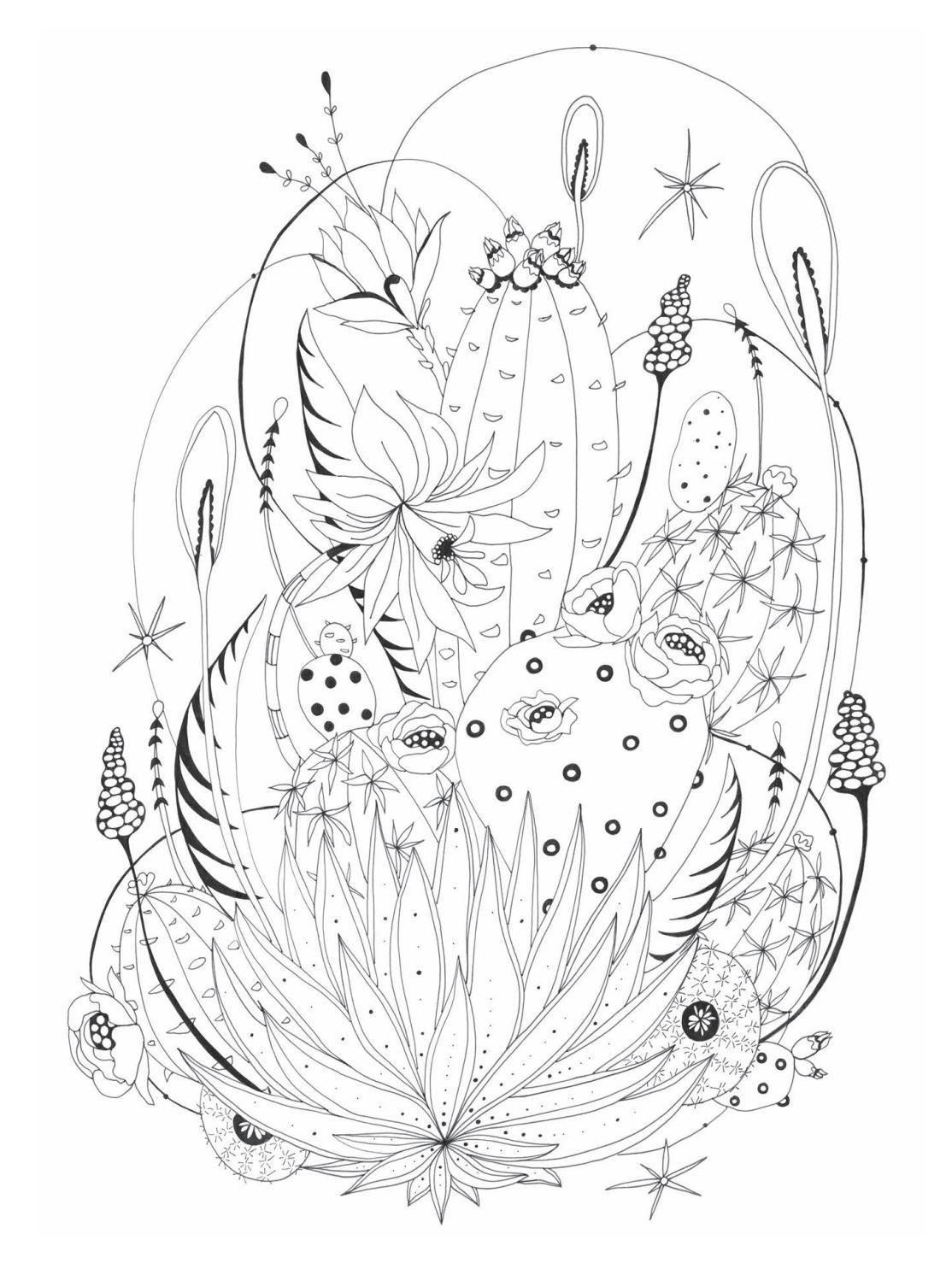 Botanical Wonderland Artist S Edition Coloring Books Color