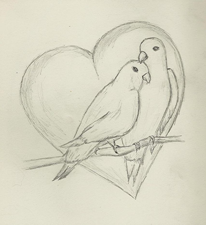 Pencil Painting For Love Sketch Painting Easy Love Bird Pencil