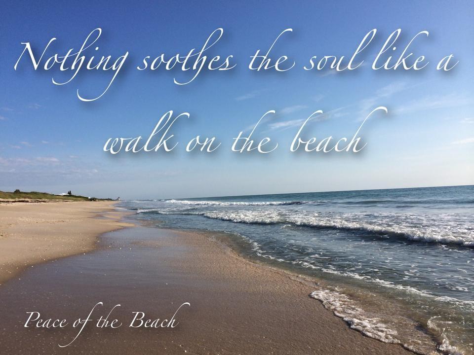beach/ Cape Cod