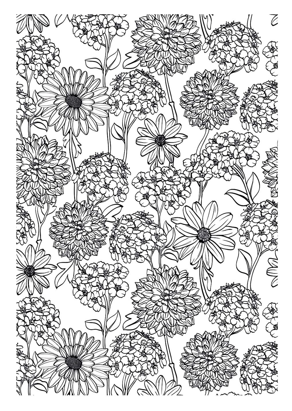 To print this free coloring page coloringadultflowers click on