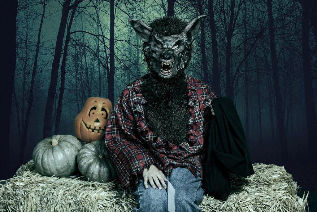 Big Bad Wolf 2 sm