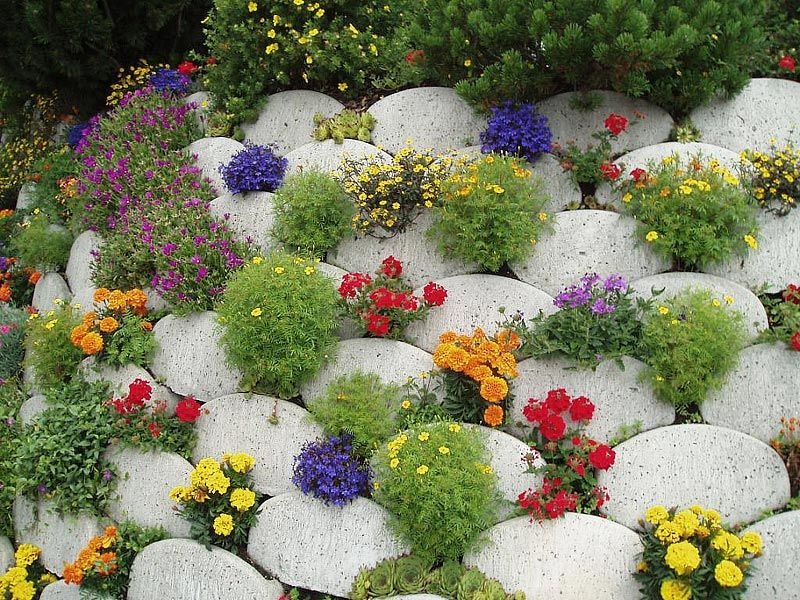 Rock Gardens Ideas Garden ideas and garden design