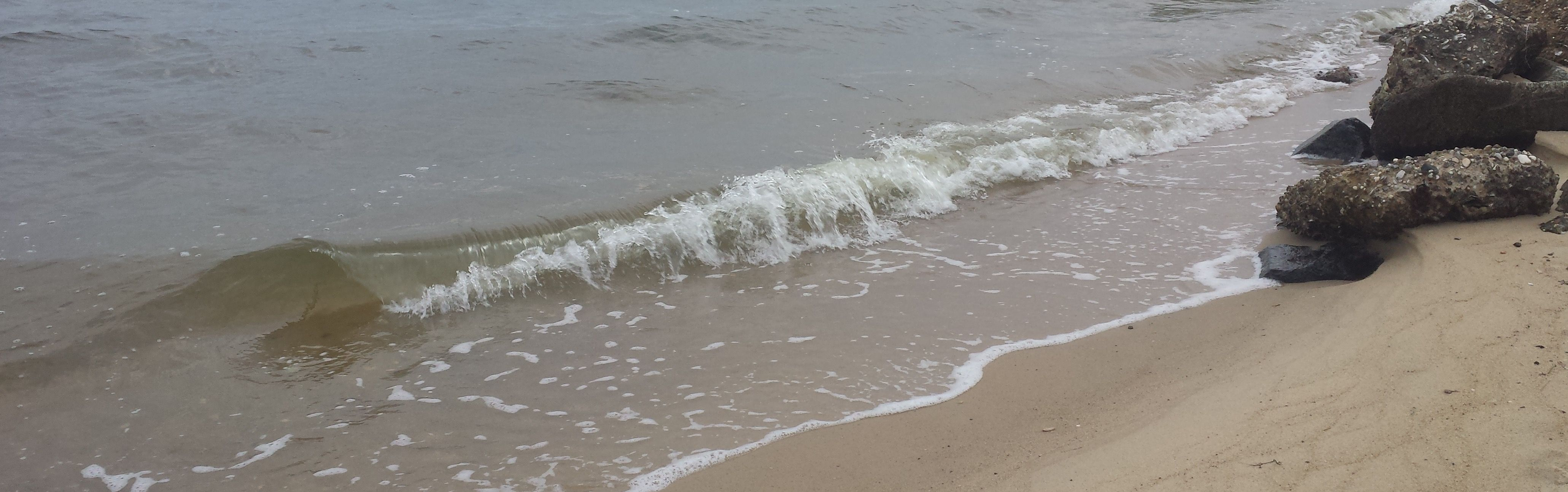 Deal Island Beach Osland Md