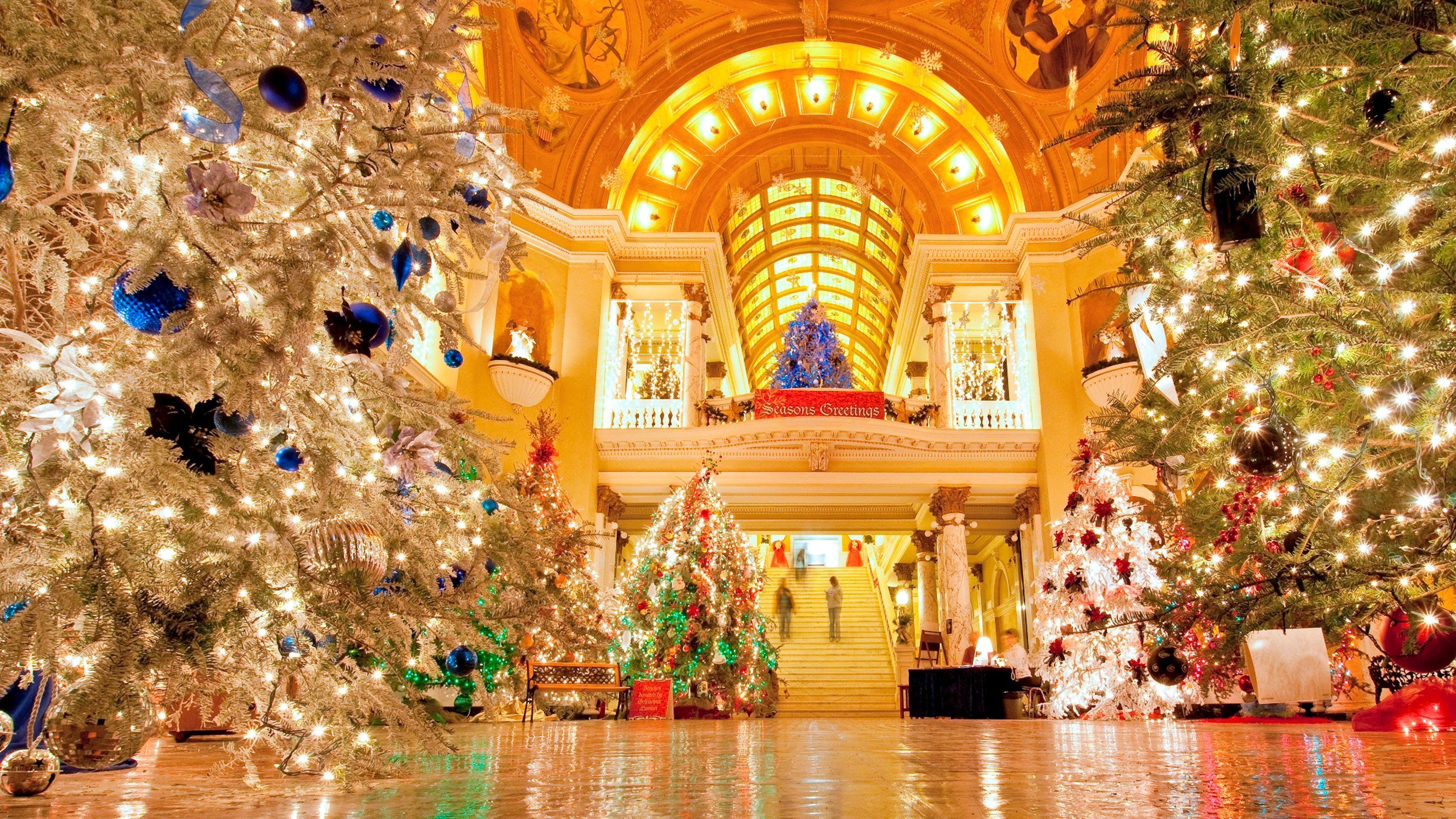 10 Travel Worthy Christmas Trees Across The Usa Large Christmas Tree Happy Christmas Day Real Christmas Tree