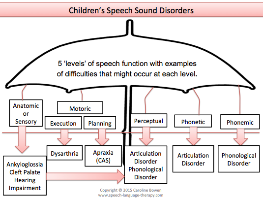Classification of Children's Speech Sound Disorders | SLP