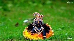 Laddu Gopal Statue With Natural Background HD Wallpaper,Gopal HD Wallpaper,Lord Krishna HD Wallpaper And Images