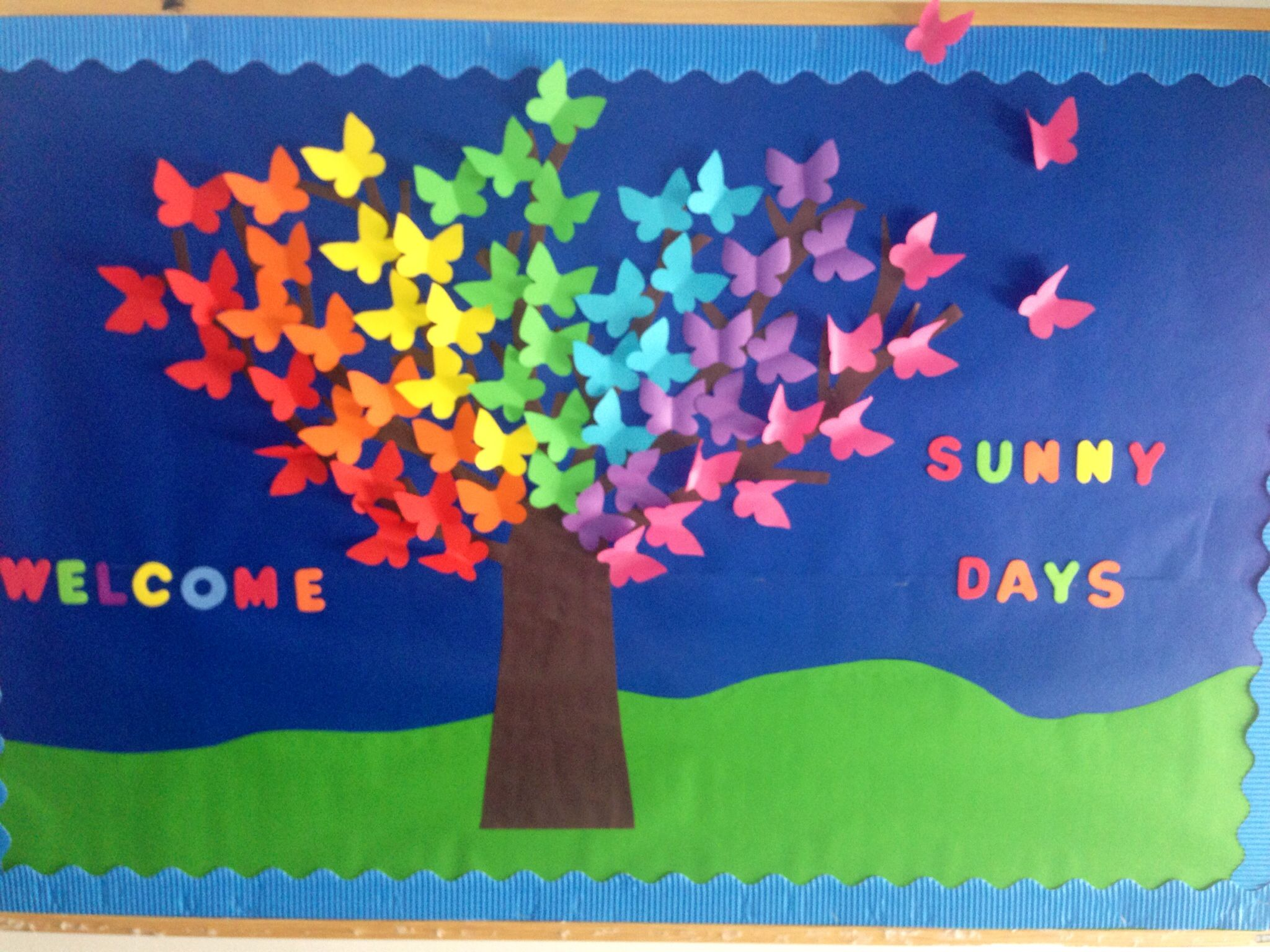 Butterfly bulletin board on pinterest butterfly life for Back to school board decoration