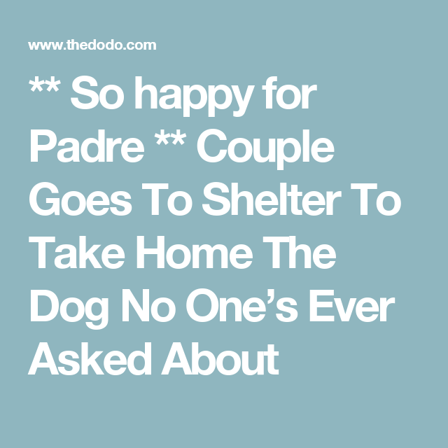 ** So happy for Padre **  Couple Goes To Shelter To Take Home The Dog No One's Ever Asked About