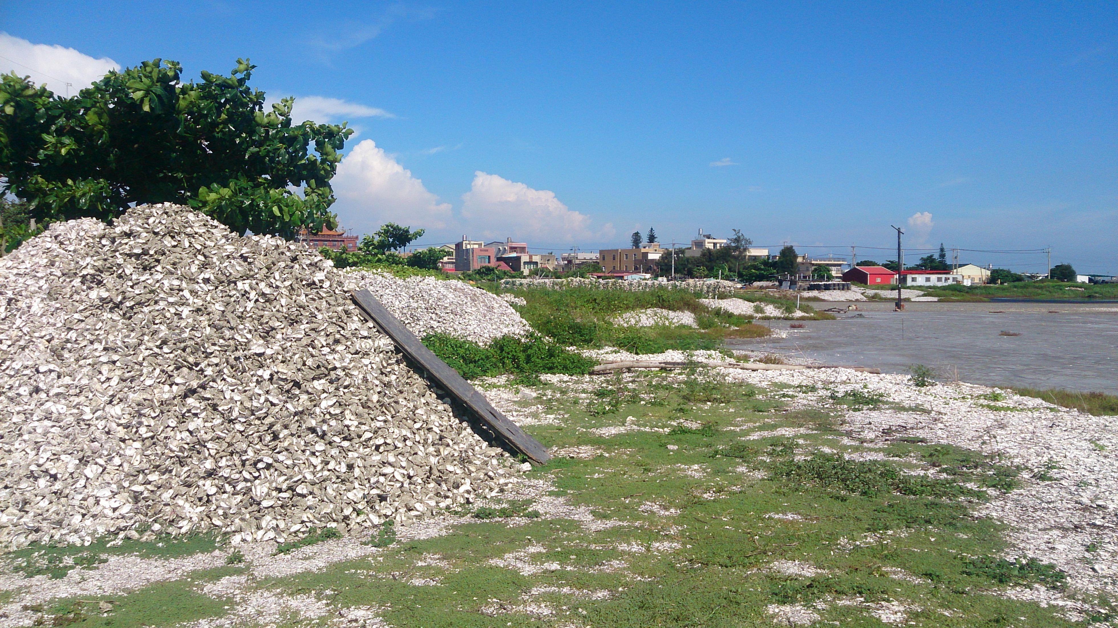 小蚵山與村莊(縣環保局於 2008 年在網寮村設置蚵殼堆置專區)