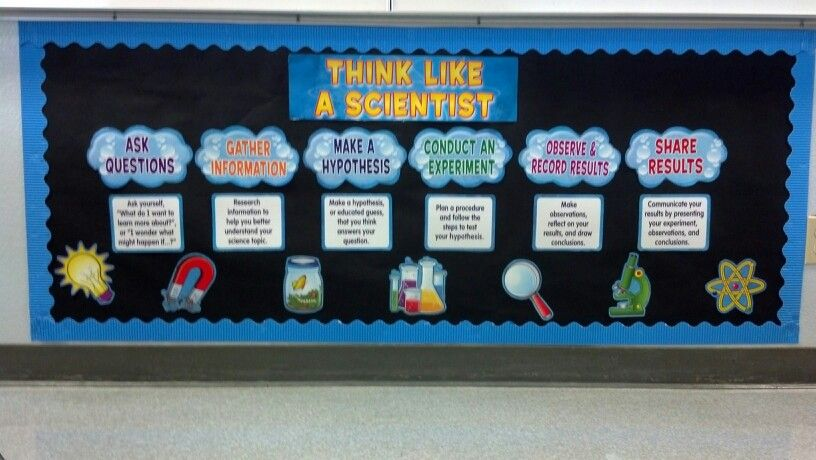 Classroom Decoration Ideas Questions ~ Scientific method bulletin board for my science classroom