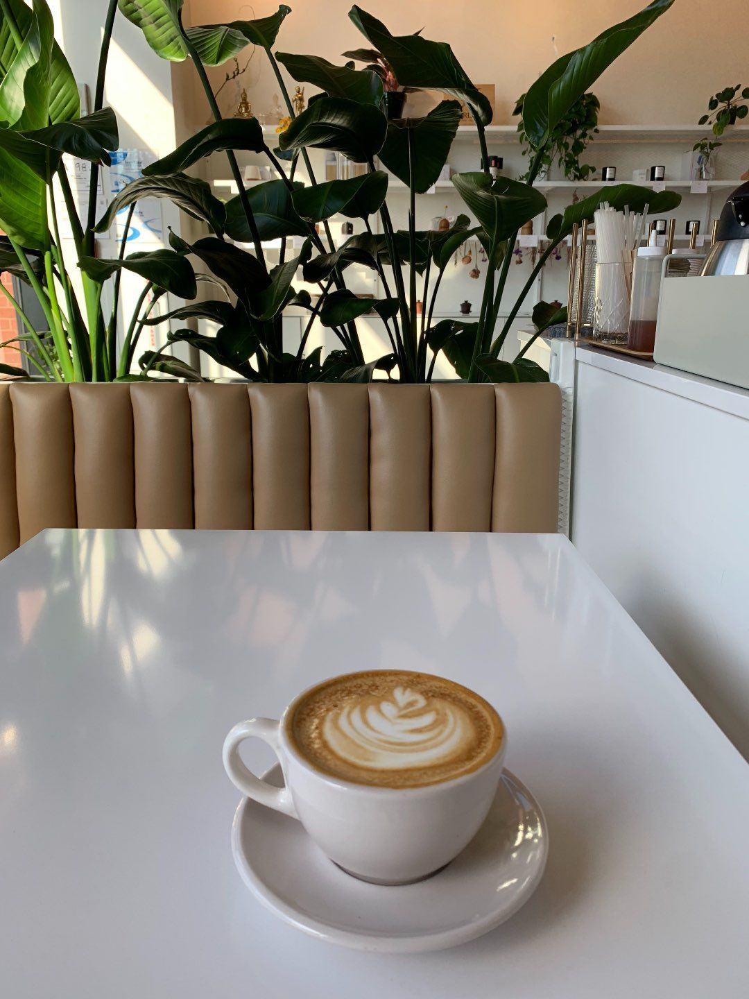 Top 15 Coffee Shops In Raleigh Nc Local Love I M Fixin To Cute Coffee Shop Coffee Shop Best Coffee Shop