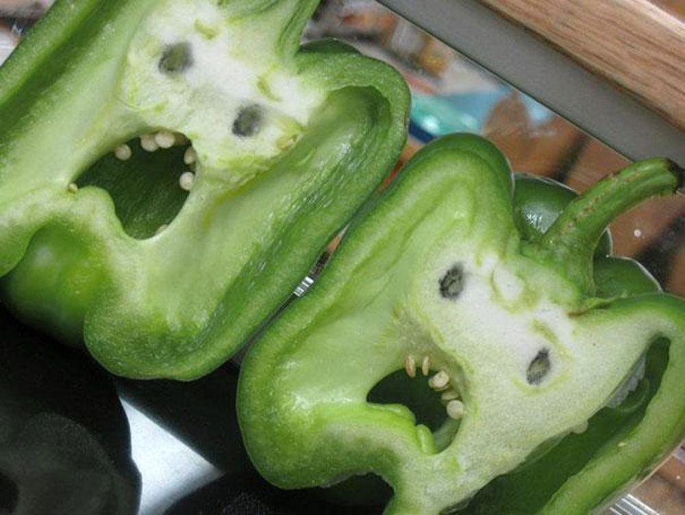 Home - Blend Of Bites | Different fruits and vegetables, Food humor, Funny  vegetables