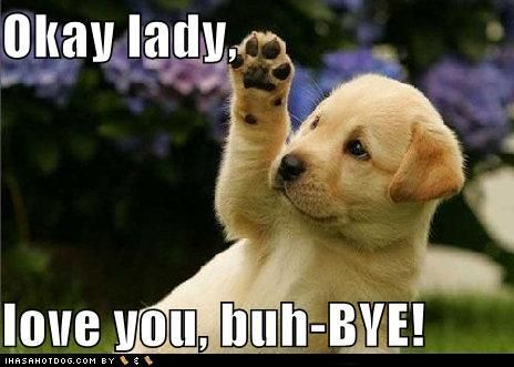 Cute Puppy Pictures Okay Lady Love You Buh Bye Baby Animals