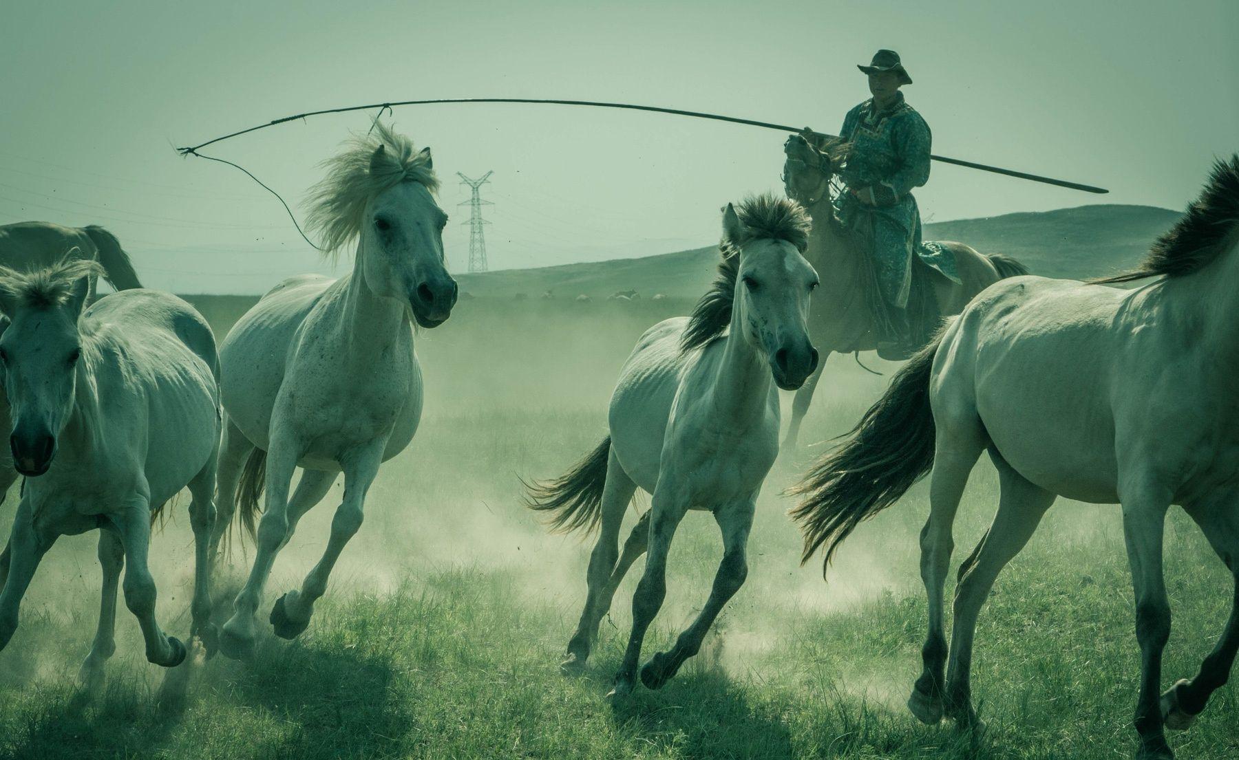 powerful+beauties+-+shot+in+xilinhot,+inner+mongolia,china