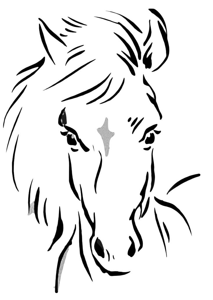 Disegni Da Colorare Testa Di Cavallo.Testa Di Cavallo 002 Png 734 1033 Testa Di Cavallo Sagoma Di Cavallo Disegni Di Cavalli