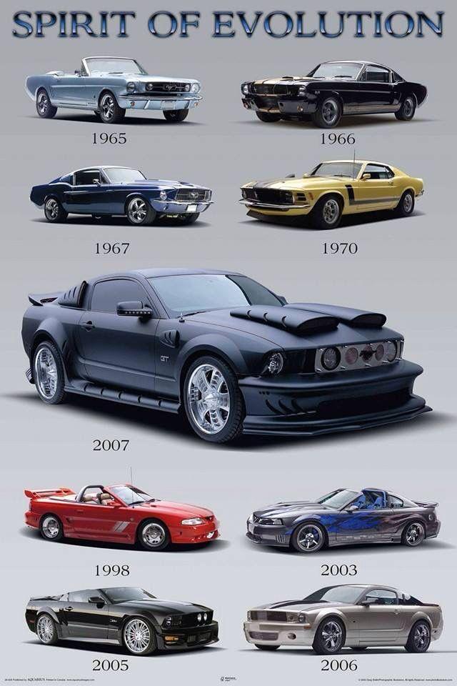 Mustang | FORD; Mustang, Shelby, Cobra, Fastback, GT, Mach 1, Boss ...