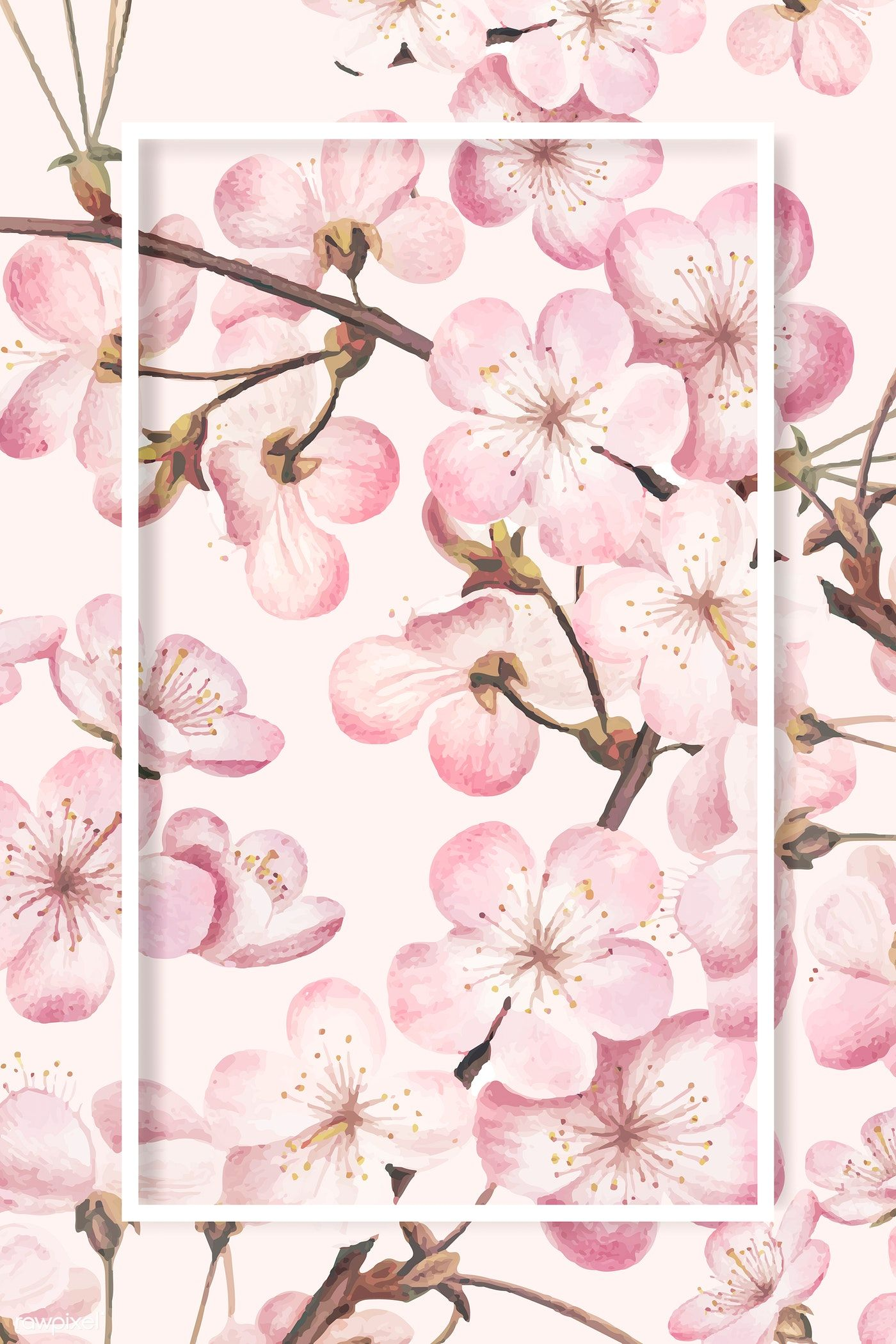 Download premium vector of Rectangle cherry blossom frame