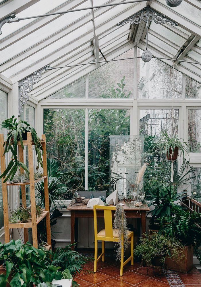 Comment s 39 occuper des plantes vertes deco jardin d 39 hiver jardins et maison - Verriere jardin d hiver ...