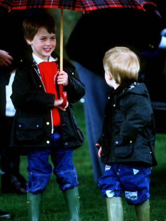 young Prince Harry and Prince William at a polo match in Cirencester