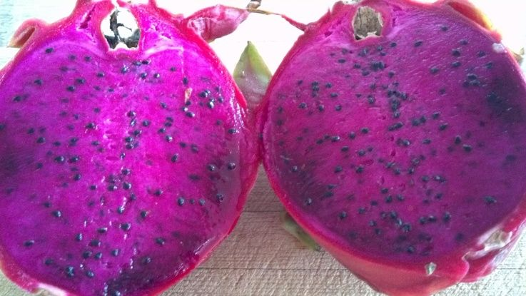 Purple dragonfruit Dragon fruit, Purple dragon fruit, Fruit