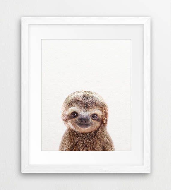 Nursery Wall Art Baby Sloth Print Nursery Decor Sloth Art Etsy Baby Wall Art Baby Animal Prints Sloth Art