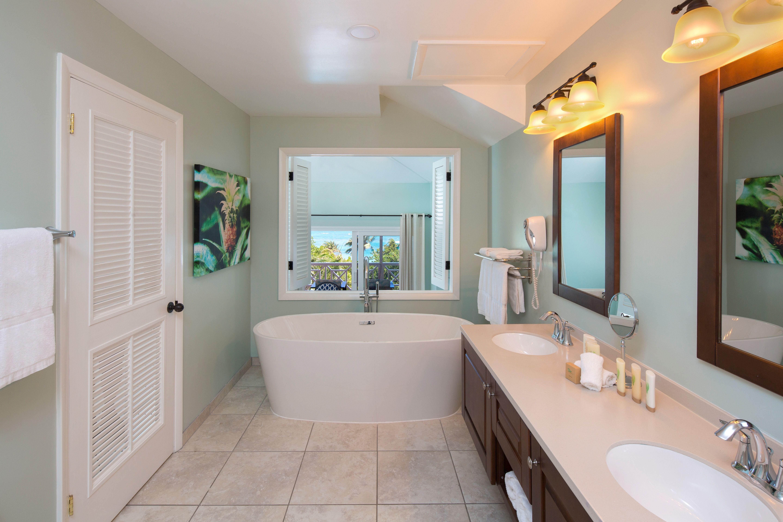 Chariman's Suite Bathroom Shower tub combination