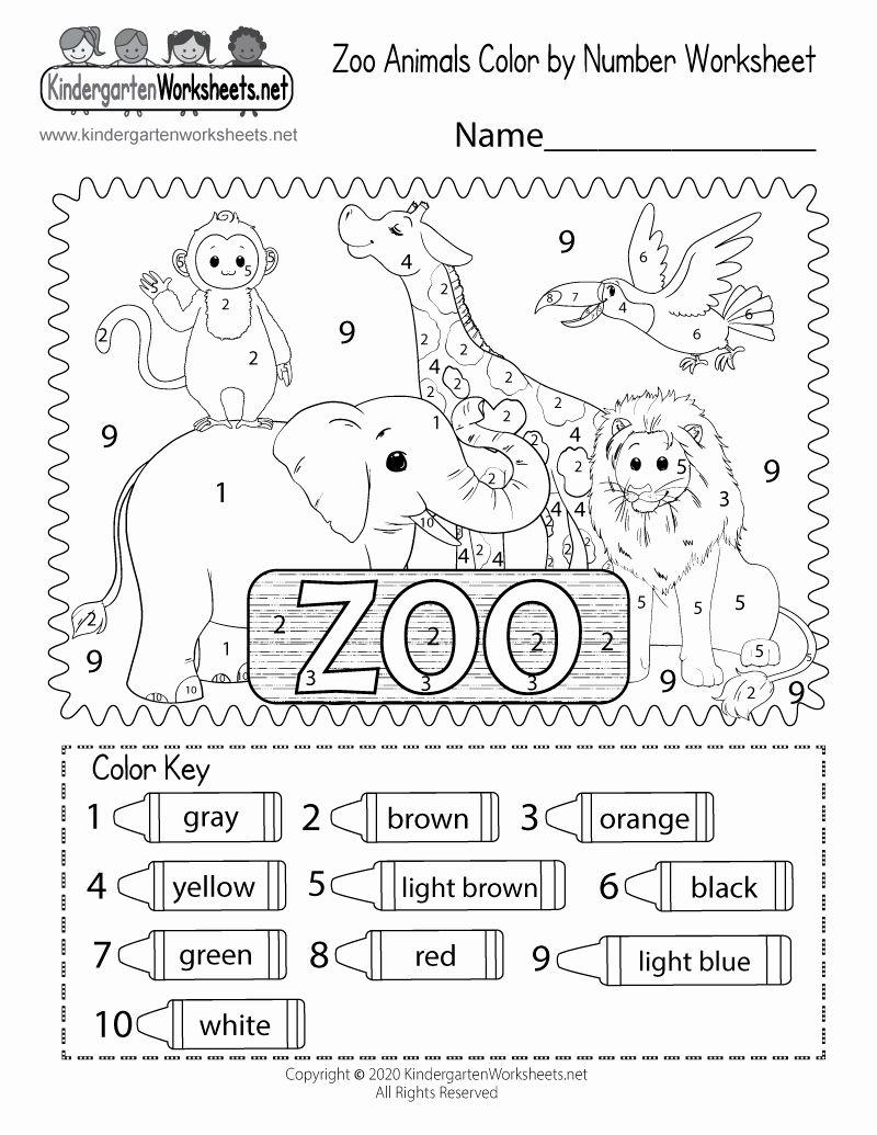 Zoo Worksheet For Kindergarten In 2020 Kindergarten Worksheets Animal Worksheets Kindergarten Colors