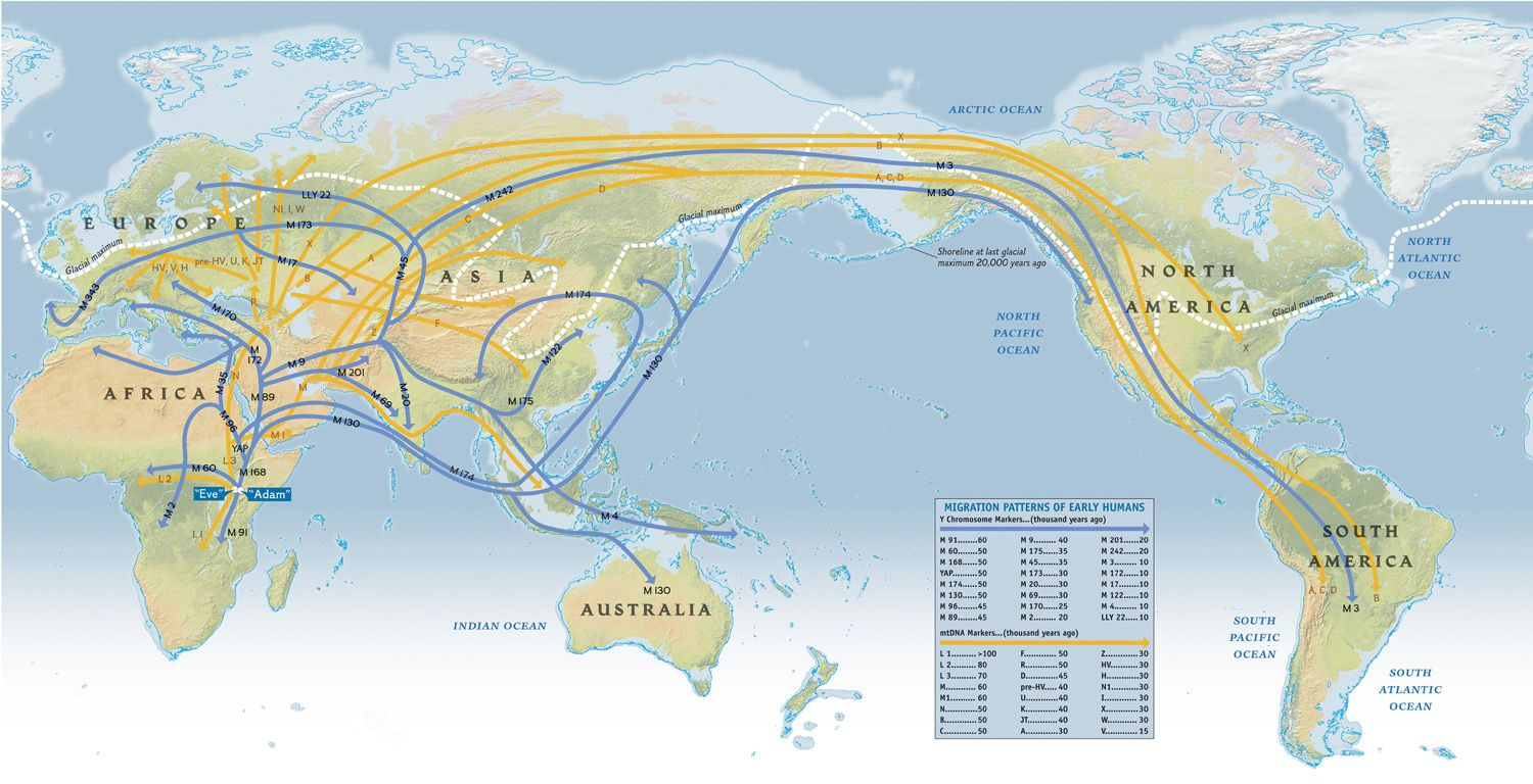 Map of early human migration patterns. The Genographic Project, a global, five-year research initiative, will trace the migratory history of the human species, which originated in Africa.