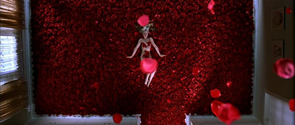 American Beauty American beauty, Beautiful film, Margot
