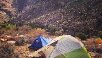 San Diego Deer Hunting – Lessons from Opening Weekend