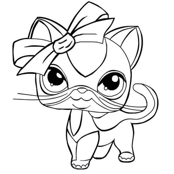 Раскраска маленький зоомагазин кошка