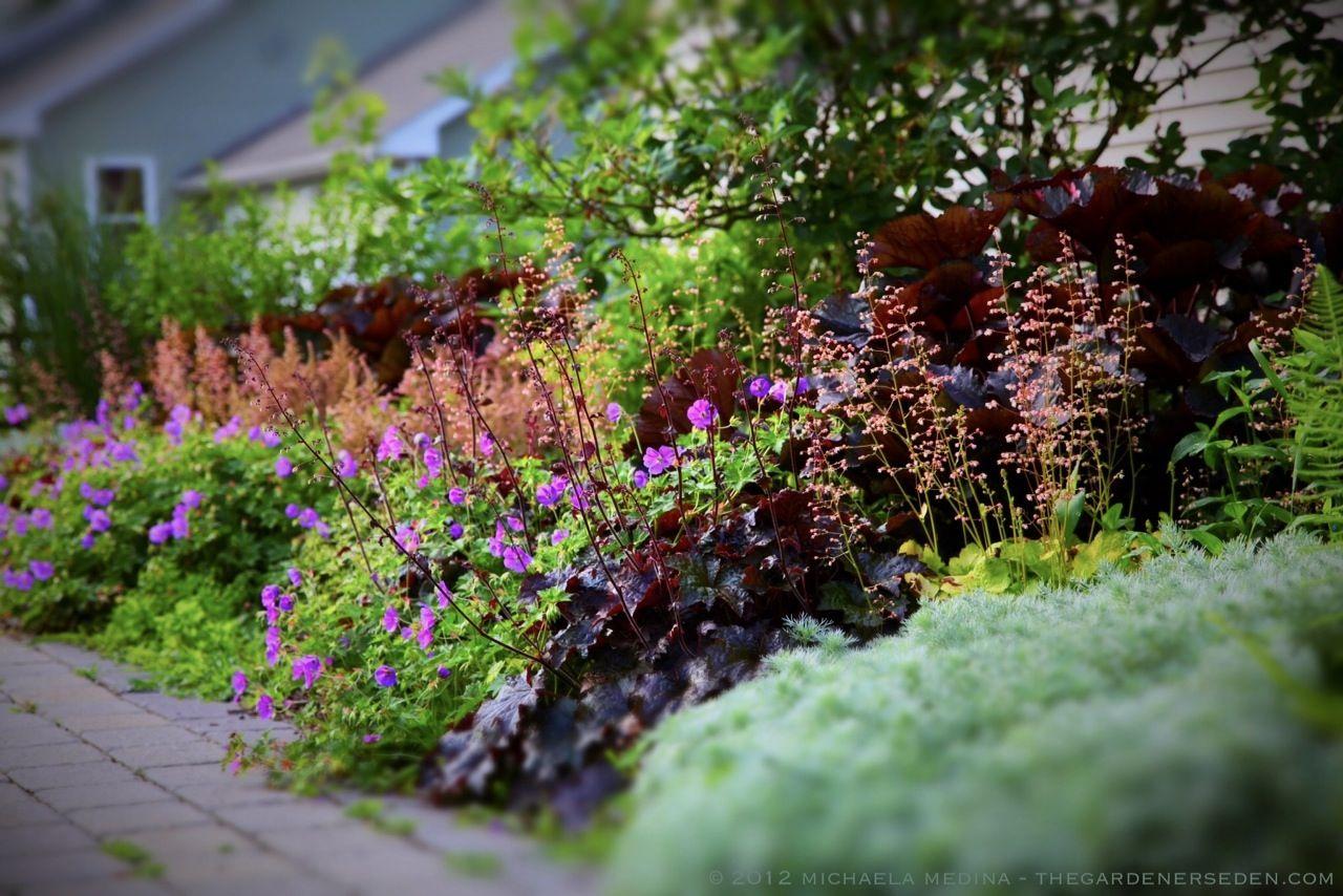 johnson garden vl michaela medina harlow garden design refer border