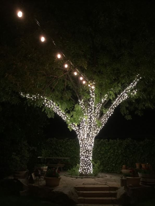 16 best patio and bistro light installation in arizona images on pinterest in 2018 bistro lights light installation and arizona