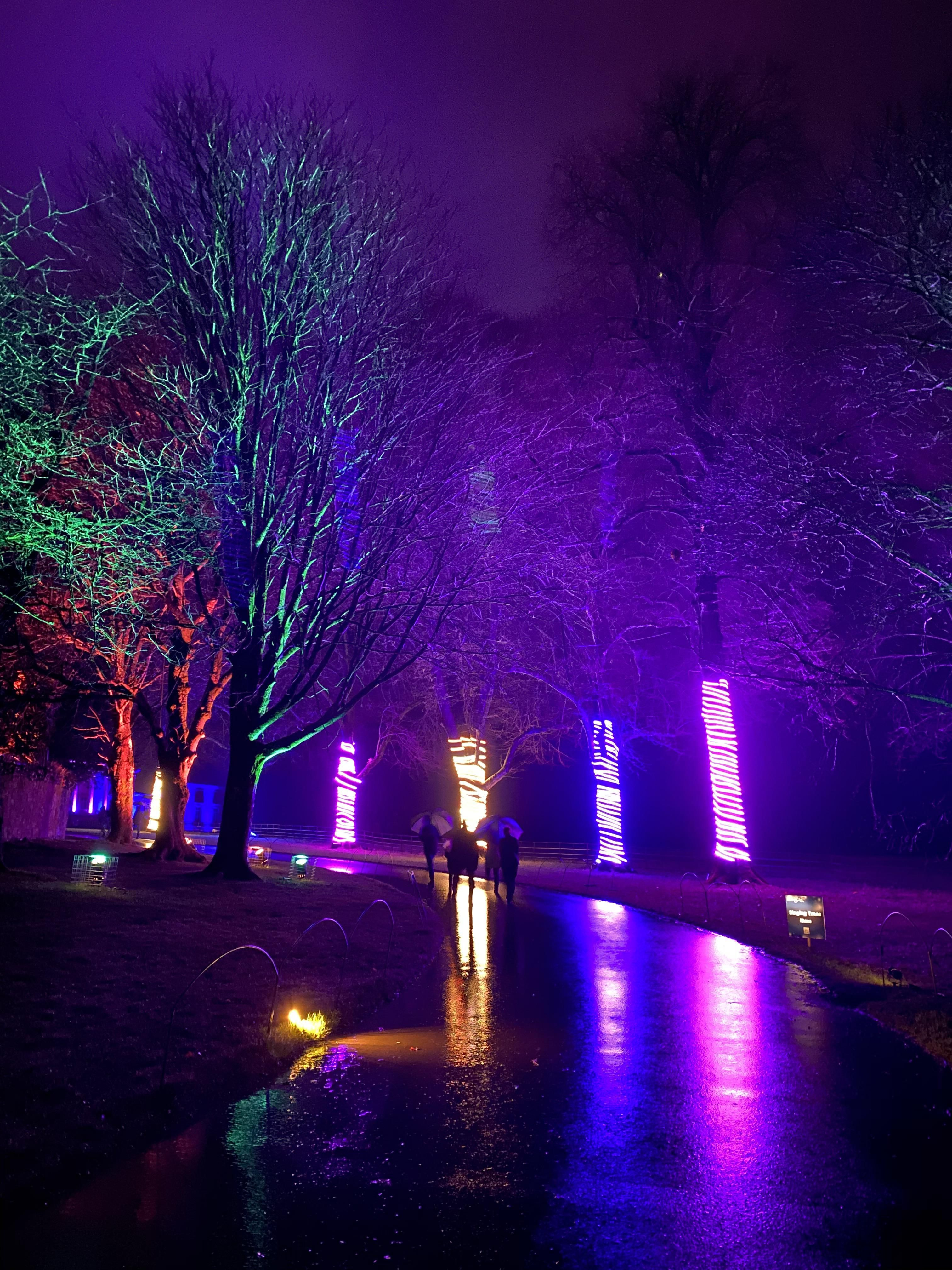 Itap Christmas Light Trail At Stourhead National Trust In Wiltshire Uk Photo Capture Nature Incredible Christmas Lights Light Trails Uk Photos