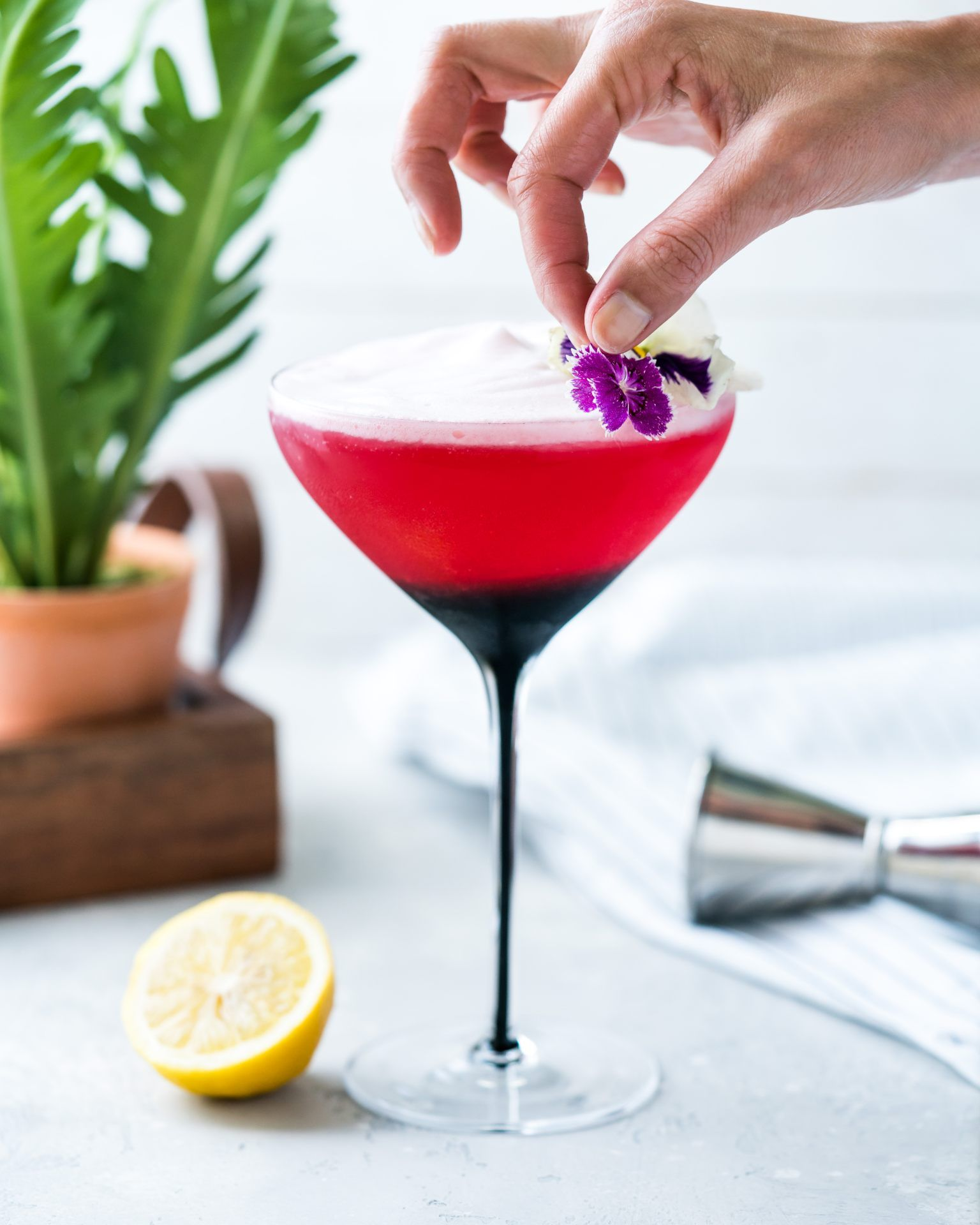 Hibiscus Gin Sour With Campari Foam