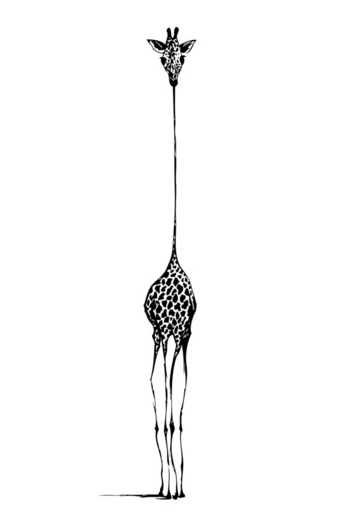 Giraffe illustration a black frame awesome home - Dessin girafe simple ...