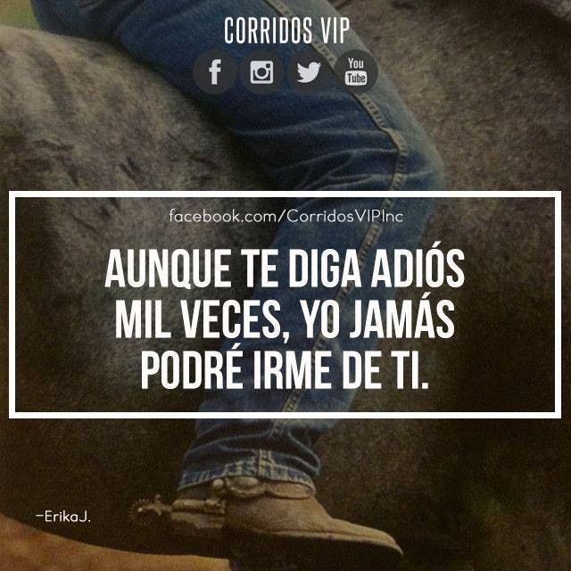Jamás.!   ____________________ #teamcorridosvip #corridosvip #corridosybanda #corridos #quotes #regionalmexicano #frasesvip #promotion #promo #corridosgram
