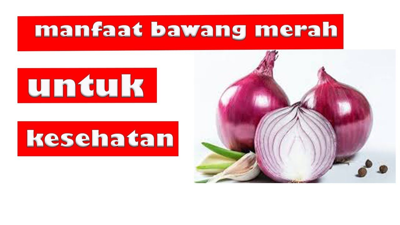 Manfaat Bawang Merah Untuk Kesehatan Bawang Bawang Merah Kesehatan