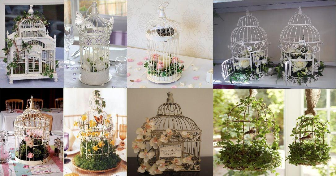 Matrimonio Tema Uccelli : Gabbie con fiori fai da te cerca google matrimonio